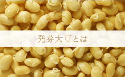 発芽大豆とは 松尾 明美