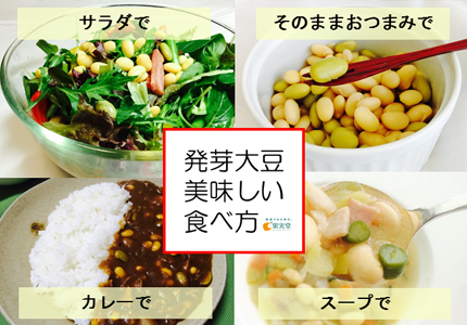 発芽大豆美味しい食べ方