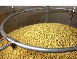 果実堂の発芽大豆の特徴