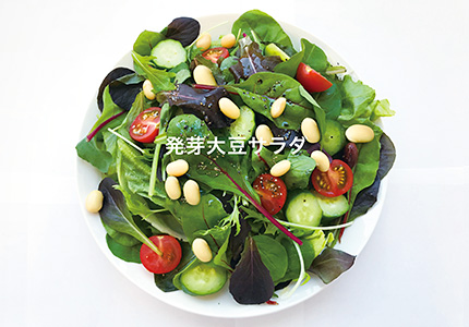 発芽大豆サラダ